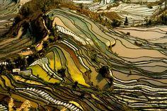 De 5 mooiste rijstvelden Azië - Backpacken in Azië