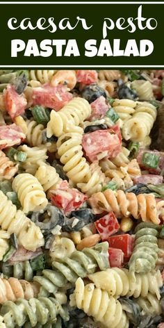 Caesar Pesto Pasta is always a hit. Spiral pasta covered in a creamy Caesar pesto dressing, chopped tomatoes, olives, Parmesan cheese, and pine nuts. So easy to make and yummy too! Caesar Pasta Salads, Pesto Pasta Salad, Easy Pasta Salad Recipe, Pasta Recipes, Simple Pasta Salad, Salad Bar, Soup And Salad, Pasta Dishes, Food Dishes