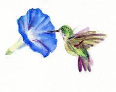 Hummingbird watercolor