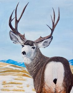 Mule Deer in the Prairies is an acrylic painting on a inch canvas. The deer is based off a photo my dad took last winter. There are some beautiful Mule Bucks around where we live. Original Paintings, Original Art, Thing 1, Mule Deer, Impressionism Art, Texture Painting, Stretched Canvas Prints, Animal Paintings, Painting Frames