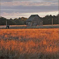 """Old Barn at Sunset, Mendocino"" Rita Crane"