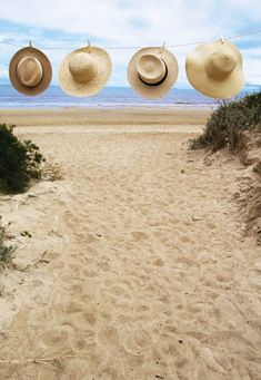 les chapeaux femme de paille, sur la plage ,belle vue