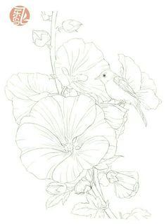 Flower Line Drawings, Bird Drawings, Love Drawings, Pencil Drawings, Flower Pictures, Colorful Pictures, Watercolor Sketch, Watercolor Paintings, Bird Sketch