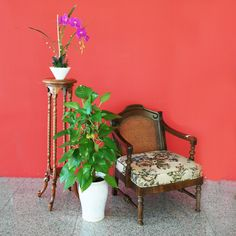 Available exclusively at Red Saga Seeds Singapore. Vintage Chairs, Vintage Furniture, Vintage Floral, Saga, Singapore, Armchair, Seeds, Floral Prints, Table