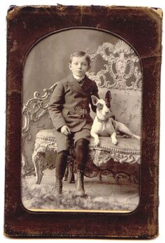Antique cabinet studio photo handsome boy with Bull Terrier on Rococo loveseat