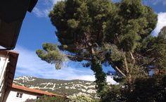 by http://ift.tt/1OJSkeg - Sardegna turismo by italylandscape.com #traveloffers #holiday | #italia #italy #sardegna #sardinia #dorgali #igitalia #igsardegna #volgoitalia #volgosardegna #bestitaliapics #bestsardegnapics #instaitalia #instasardegna #focusardegna #italiainunoscatto #italian_trips #italia_super_pics #sardegna_super_pics #sardegnaofficial #lanuovasardegna #sardegnaphoto #sardegna_official #sardiniaexperience #sardiniain #sardiniazoom #sardinialandscape #sardegnacountry Foto…
