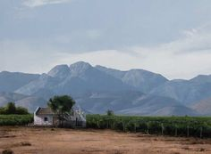 South African Landscape painting Image entitled 'Robertson Valley'