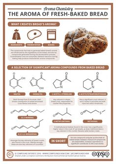 "distillationsblog: ""Image: Compound Interest Who doesn't love the smell of freshly baked bread? Here's the science of that aroma. """