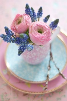 ♔ in the Spring...  pink ranunculus and blue muscari