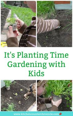 Takes you step by step through how to plant a garden. Let the kids get their hands dirty in the soil. Gardening with kids is an important step to raising healthy kids. Vegetable Garden For Beginners, Gardening For Beginners, Gardening Tips, Diy Garden Projects, Garden Crafts, Garden Ideas, Healthy Habits For Kids, Summer Crafts For Kids, Kids Fun
