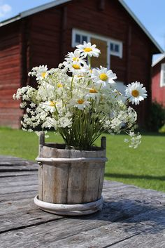 Daisy bouquet on the farm Happy Flowers, Beautiful Flowers, Bouquet Champetre, Daisy Hill, Good Morning Friday, Happy Friday, Sunflowers And Daisies, Wildflowers, Daisies Bouquet
