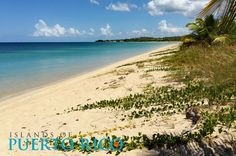 Combate Beach is one of the best beaches in Puerto Rico. Clear waters, family friendly, restaurants and nearby hotels. Map, photos, restaurants.
