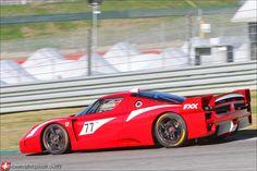 Ferrari FXX 445.jpg