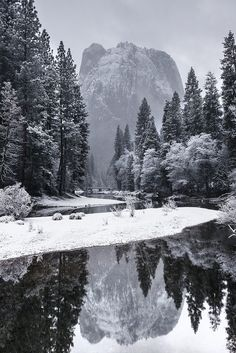 A fresh layer of snow creates a beautiful winter scene at Yosemite National Park in California on February California National Parks, Yosemite National Park, California Usa, Winter Szenen, Winter Night, Adventure Is Out There, Beautiful Landscapes, Beautiful World, Canvas Art