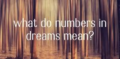 The gamblers dreams to numbers guide will help you translate and understand your dreams for Fafi 1-49 and other lottos. My Lucky Numbers, Lucky Numbers For Lottery, Lotto Numbers, Dream Guide, Dream Book, South Africa, Dreaming Of You, How To Apply, Lion Tattoo