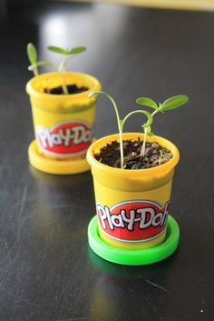 Reuse Play-doh containers for spring planting - recycling containers Earth Day Activities, Fun Activities To Do, Preschool Activities, Recycling Activities For Kids, April Preschool, Preschool Garden, Preschool Projects, Science Projects, Art Projects