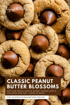 Classic Peanut Butter Blossoms are soft and chewy peanut butter cookies with a sugary, crackled top and finished with a milk chocolate kiss! They're the perfect go-to cookie for the holiday season for good reason—they're easy to make and incredibly delicious! Recipe on BeyondtheButter.com | #peanutbutterblossoms #hersheykisscookies #christmascookies #beyondthebutter #chocolate Peanut Butter Dessert Recipes, Chocolate Peanut Butter Cheesecake, Peanut Butter Eggs, Chewy Peanut Butter Cookies, Peanut Butter Blossoms, Butter Recipe, Chocolate Desserts, Cookie Recipes, Ultimate Cookie Recipe