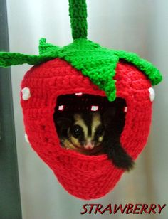 Handmade Chochet Fruit Hanging Dome Sugar Glider by worldtrade89