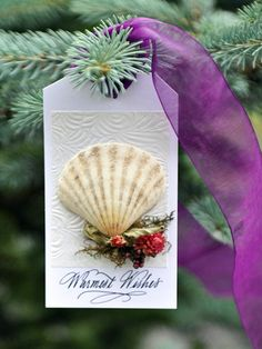 Shell We? Wine & Gift Tag by Bilancia Designs