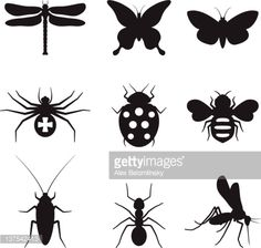 Vector Art : Stylized insects black and white icon set
