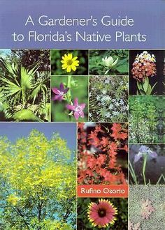 A Gardener's Guide to Florida's Native Plants by Rufino Osorio (2001, Paperback)