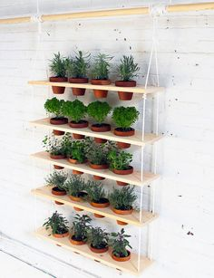 This hanging planter is made up of five wooden planks with openings that let pots dangle.