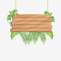 Wooden Hanging with tropical Grátis PNG e Clipart Flower Background Wallpaper, Flower Backgrounds, Background Patterns, Wallpaper Backgrounds, Tropical Background, Background Pictures, Adobe Illustrator, Theme Bapteme, Die Dinos Baby