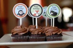 Forest Animal Birthday Party | KITE RIDE