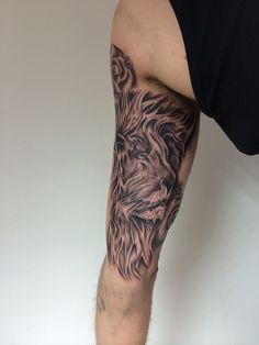 Lion I did today