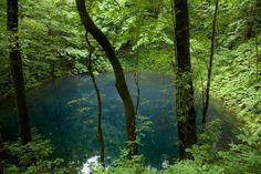 Un pantano