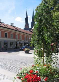 Still Uppsala, with the Uppsala Domkyrka, cathedral in the background.