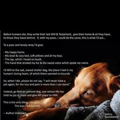 Last will and testament of pets