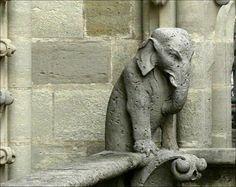 Elephant gargoyle Notre Dame...so many different gargoyles...funny. (Paris)