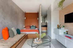 TRIA Arquitectura creates flexible living spaces within compact apartment