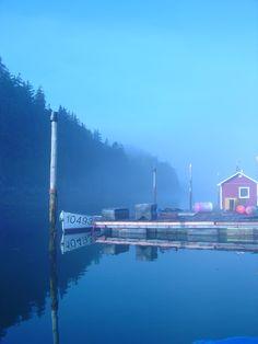 Foggy morning on Campobello Island