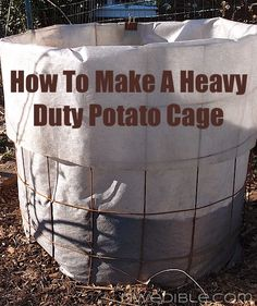 Heavy duty potato cages made with concrete mesh and landscape fabric. Super easy and cheap.