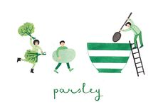 parsley | Flickr – 相片分享!