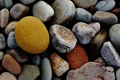 just some pebbles on a beach. Spey bay Scotland - we went to try and see dolphins, but none there that day, so had to find something else to shoot. lots of sandstone dotted about amongst the granite pebbles Summer Fruit, Golden Yellow, Scotland, Berries, Space, Floor Space, Bury, Blackberry, Spaces