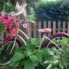 Cute, huh?  I did this with an old bicycle in my back yard.  I can't wait until the plants/flowers grow bigger to look filled in. Love it~