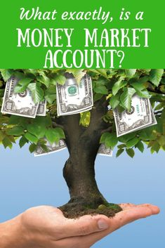 How is a money market account different from a savings account? Financial Tips, Financial Literacy, Small Business Accounting Software, Money Market Account, Investing Money, Saving Money, Managing Your Money, Money Management, Personal Finance