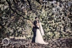 Chris and Jessie's Wellington wedding. New Zealand Destinations, Bride And Groom Pictures, Wedding Vendors, Weddings, Couples Images, Autumn Trees, Great Pictures, Jessie, Big Day