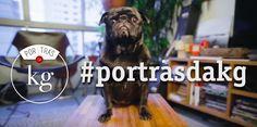 Assista o novo canal de jornalismo gastronômico do YouTube, o #PorTrasDaKg!
