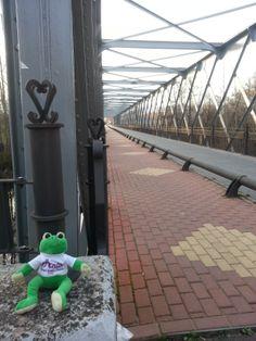 Ando en el puente de hierro antes de llegar a Carrizo.