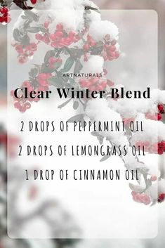 Clear Winter Essential Oil Blend Double for my kitchen diffuser Essential Oil Diffuser Blends, Doterra Essential Oils, Relaxing Essential Oil Blends, Pure Essential, Young Living Oils, Young Living Essential Oils, Savon Soap, Aromatherapy Oils, Aromatherapy Candles