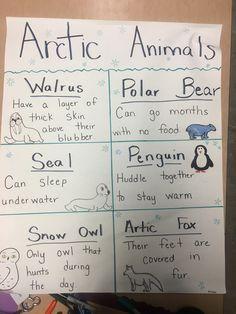Animal Activities, Classroom Activities, Polar Animals Preschool Crafts, Winter Activities, Kindergarten Science, Preschool Lessons, Anchor Charts, Arctic Habitat, Chart School