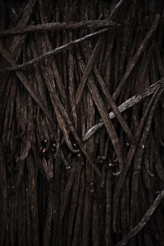 Patterns. Vanilla beans, black, dark