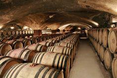 Château de Meursault, France: where your tastebuds delight over the world's finest wines