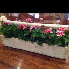 An old wooden toolbox filled with geraniums