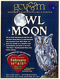 Owl Moon   Come learn about the Owls. Make your reservation at www.gcv.org