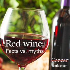 Is red wine healthy for you? And can it protect you from cancer? Click through to learn about red wine's benefits and drawbacks and how much you can safely drink. #endcancer